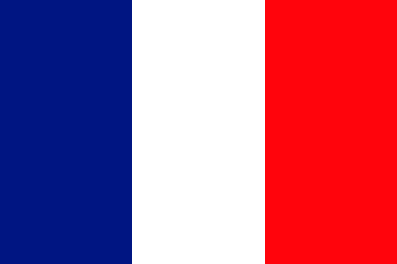 French fundamental aspects of