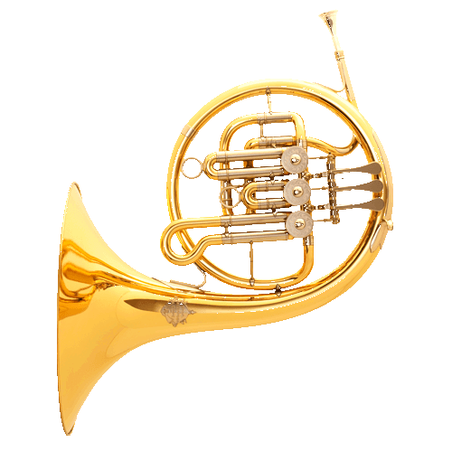 French horn bootcamp: buzzing makes no